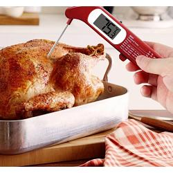 Danesco Folding Digital Meat Thermometer 1