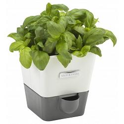 Cole & Mason Self Watering Herb Keeper 1