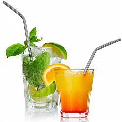 Danesco Stainless Steel Straw Set of 4 1