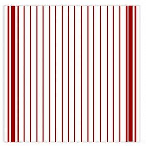 Ziczac Set of 3 Red Striped Dishcloths